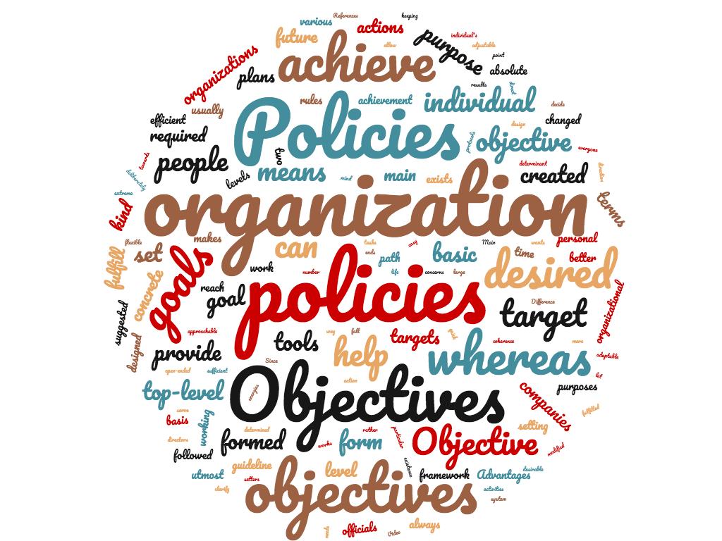 diferencia entre objetivo y políticas