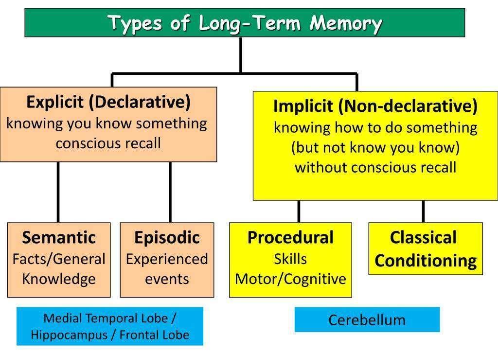 Memoria a largo plazo