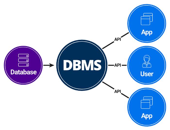 DBMS 1