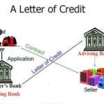 Diferencia entre carta de crédito y carta de compromiso (con tabla)
