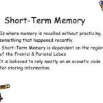 Diferencia entre memoria a corto y largo plazo (con tabla)